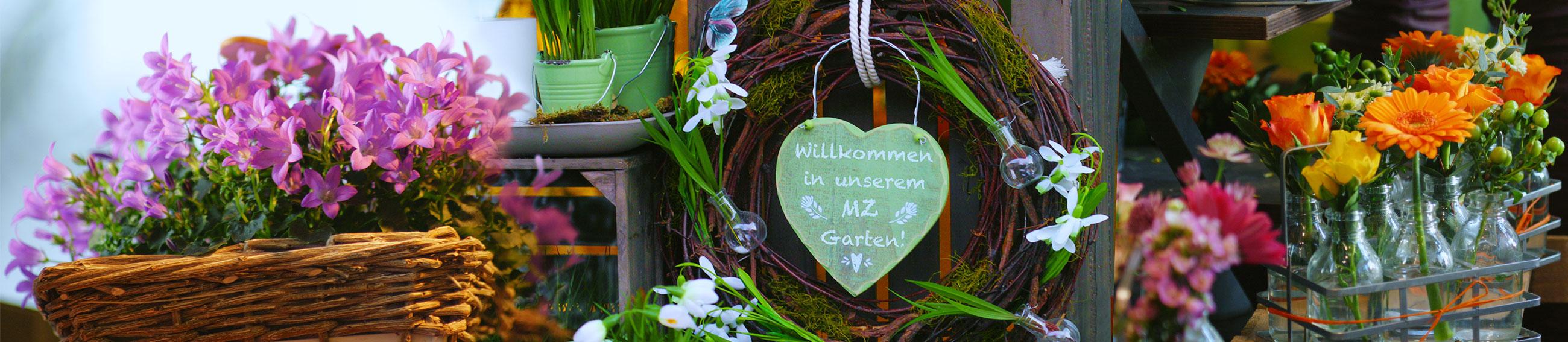 Garten im M*Z. Foto von L.Vandrei